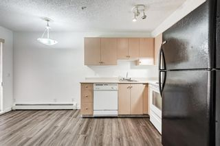 Photo 19: 3209 1620 70 Street SE in Calgary: Applewood Park Apartment for sale : MLS®# A1116068