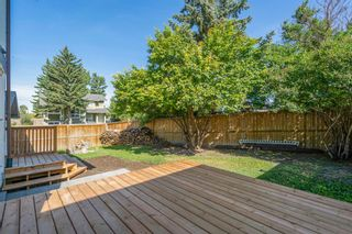 Photo 4: 135 Doverglen Place SE in Calgary: Dover Detached for sale : MLS®# A1058125