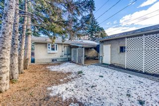 Photo 29: 345 Whitney Crescent SE in Calgary: Willow Park Detached for sale : MLS®# A1061580