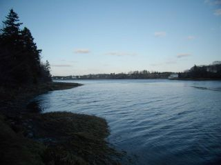 Photo 14: Hwy 3 Tusket Highway in Tusket: County Tusket- Hwy 308 Vacant Land for sale (Yarmouth)  : MLS®# 201726173