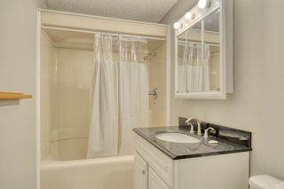 Photo 10: 355 Whitman Place NE in Calgary: Whitehorn Detached for sale : MLS®# A1046651