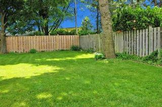 Photo 9:  in TORONTO: Freehold for sale