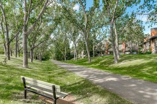 Photo 45: Silver Springs Calgary Real Estate - Steven Hill - Luxury Calgary Realtor of Sotheby's Calgary