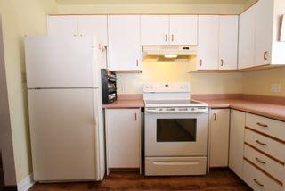 Photo 3: 6 Trent River Road in Kawartha Lakes: Rural Eldon House (Sidesplit 3) for sale : MLS®# X4984209
