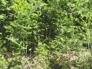 Photo 1: Lot 23 Vickers Trail in Anglemont: Land Only for sale : MLS®# 10011652