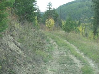 Photo 7: 80 Acres Creighton Valley Road, in Lumby: Vacant Land for sale : MLS®# 10239894