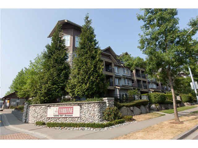 """Photo 1: Photos: 113 12040 68 Avenue in Surrey: West Newton Townhouse for sale in """"TERRANE"""" : MLS®# F1446726"""