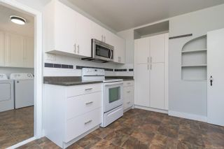 Photo 9: 1720 Lansdowne Rd in : SE Camosun House for sale (Saanich East)  : MLS®# 878359
