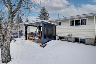 Photo 41: 183 Brabourne Road SW in Calgary: Braeside Detached for sale : MLS®# A1064696