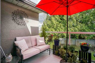 """Photo 28: 34 4740 221 Street in Langley: Murrayville Townhouse for sale in """"EAGLECREST"""" : MLS®# R2554936"""