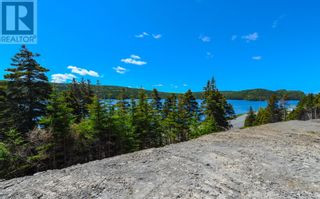 Photo 23: 1313-1315 Main Road in Dunville/Harbour Drive: Vacant Land for sale : MLS®# 1232516