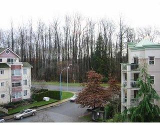 """Photo 8: 406 2615 JANE ST in Port Coquiltam: Central Pt Coquitlam Condo for sale in """"BURLEIGH GREEN"""" (Port Coquitlam)  : MLS®# V569262"""