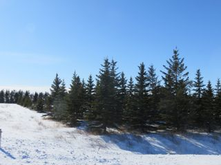 Photo 5: 0 Centreline Road: RM Springfield Vacant Land for sale (R04)  : MLS®# 202103923