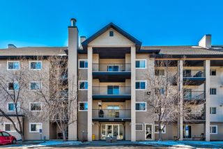 Photo 2: 3109 4975 130 Avenue SE in Calgary: McKenzie Towne Apartment for sale : MLS®# A1097325
