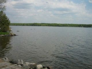 Photo 11: 267 Mcguires Beach Road in Kawartha Lakes: Rural Carden House (Bungalow-Raised) for sale : MLS®# X3453986