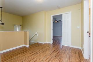 Photo 25: 6146 195 Street in Surrey: Cloverdale BC House for sale (Cloverdale)  : MLS®# R2277304