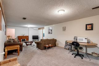 Photo 19: 11 Bedwood Place NE in Calgary: Beddington Heights Detached for sale : MLS®# A1145937