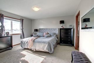 Photo 30: 176 WILLOWMERE Way: Chestermere Detached for sale : MLS®# A1153271
