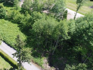 Photo 6: 3891 Discovery Dr in CAMPBELL RIVER: CR Campbell River North Land for sale (Campbell River)  : MLS®# 752841