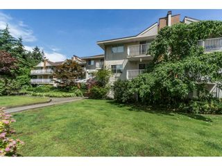 """Photo 20: 214 1187 PIPELINE Road in Coquitlam: New Horizons Condo for sale in """"PINECOURT"""" : MLS®# R2078729"""