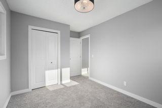 Photo 13: 1504 Mardale Way NE in Calgary: Marlborough Detached for sale : MLS®# A1083168