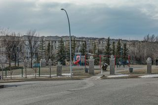 Photo 50: 137 ROYAL CREST Bay NW in Calgary: Royal Oak Detached for sale : MLS®# A1083162