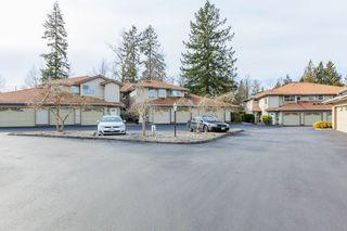 "Photo 12: 25 12071 232B Street in Maple Ridge: East Central Townhouse for sale in ""CREEKSIDE GLEN"" : MLS®# R2436204"