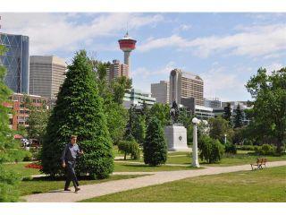 Photo 32: 606 323 13 Avenue SW in Calgary: Victoria Park Condo for sale : MLS®# C4016583