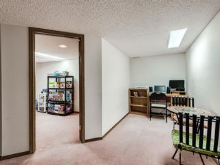 Photo 29: 64 Sanderling Hill in Calgary: Sandstone Valley Detached for sale : MLS®# A1090715