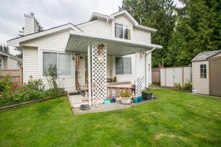 "Photo 19: 20760 115 Avenue in Maple Ridge: Southwest Maple Ridge House for sale in ""GOLF WYND ESTATES"" : MLS®# R2097803"