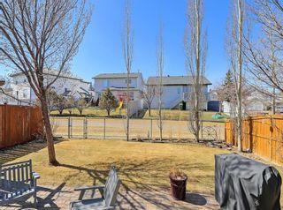 Photo 41: 180 Harvest Park Way NE in Calgary: Harvest Hills Detached for sale : MLS®# A1095156