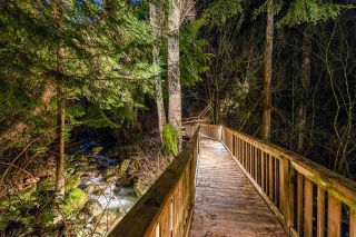 Photo 38: 759 SUNSET Ridge in Port Moody: Anmore House for sale : MLS®# R2553024