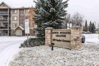 Photo 32: 215 279 SUDER GREENS Drive in Edmonton: Zone 58 Condo for sale : MLS®# E4219586