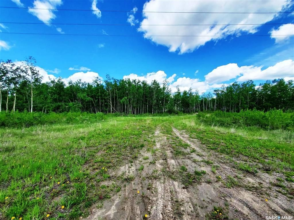 Main Photo: 138 Acres, RM of Meadow Lake #588 in Meadow Lake: Lot/Land for sale (Meadow Lake Rm No.588)  : MLS®# SK860207