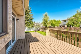 Photo 43: 416 McKerrell Place SE in Calgary: McKenzie Lake Detached for sale : MLS®# A1112888