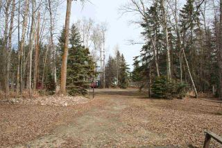 Photo 4: 192 SV Grandview Drive: Rural Wetaskiwin County House for sale : MLS®# E4235998