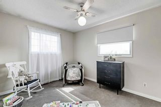 Photo 30: 16105 87A Avenue NW in Edmonton: Zone 22 House for sale : MLS®# E4245666