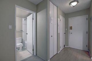 Photo 20: 327 820 89 Avenue SW in Calgary: Haysboro Apartment for sale : MLS®# A1145772