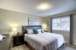 Photo 23: 410 DRAKE LANDING Point: Okotoks Detached for sale : MLS®# A1026782