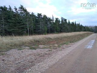 Photo 7: Lot Nollett Beckwith Road in Ogilvie: 404-Kings County Vacant Land for sale (Annapolis Valley)  : MLS®# 202120227