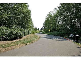 Photo 18: 51 20176 68 AVENUE in Langley: Willoughby Heights Home for sale ()  : MLS®# F1449385