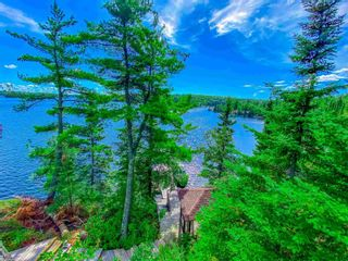 Photo 10: 48 LILY PAD BAY in KENORA: House for sale : MLS®# TB202139