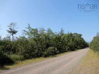 Photo 7: Watt Road in Hedgeville: 108-Rural Pictou County Vacant Land for sale (Northern Region)  : MLS®# 202122216