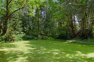 Photo 20: 23733 FERN Crescent in Maple Ridge: Silver Valley House for sale : MLS®# R2076026