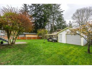 Photo 19: 2912 VICTORIA Street in Abbotsford: Abbotsford West House for sale : MLS®# R2154611