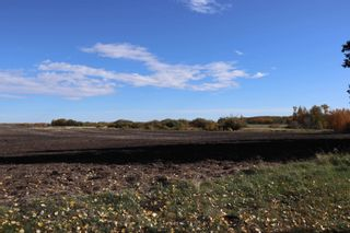Photo 2: TWP 491 RR 273: Rural Leduc County Rural Land/Vacant Lot for sale : MLS®# E4264523