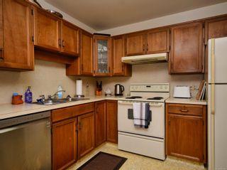 Photo 15: 204 1110 Oscar St in : Vi Fairfield West Condo for sale (Victoria)  : MLS®# 860310