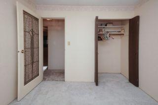 Photo 22: 21260 COOK Avenue in Maple Ridge: Southwest Maple Ridge House for sale : MLS®# R2530636