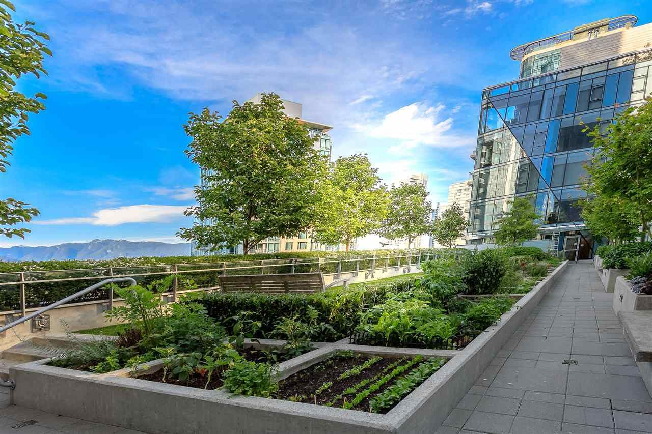Main Photo: 305 1477 Pender Street in Vancouver: Coal Harbour Condo for rent ()