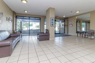 Photo 3: 406 647 Michigan St in : Vi James Bay Condo for sale (Victoria)  : MLS®# 884657